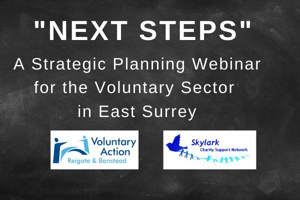"""Next Steps"" Strategic Planning Webinar"