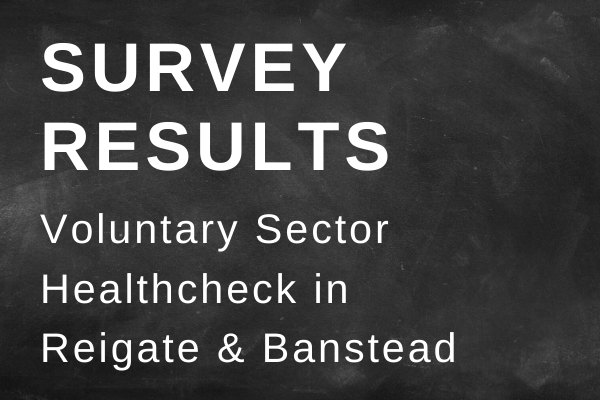 Reigate & Banstead Survey Results