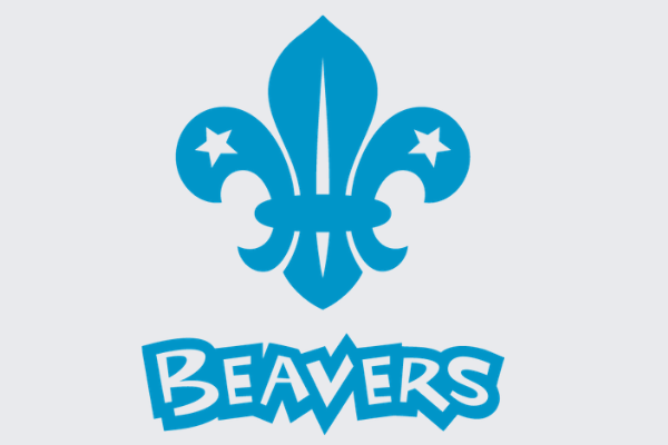 Scout Leader/ Assistant