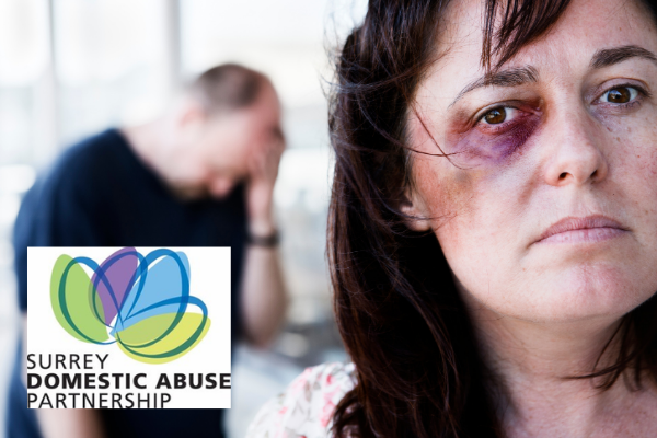 domestic abuse with SDAP logo