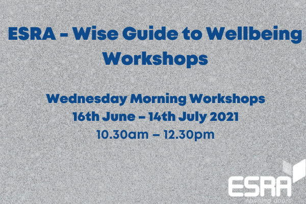 Wise Guide to Wellbeing Workshops
