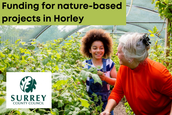 Funding for nature based projects in Horley