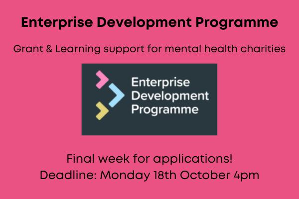 Enterprise development programme - Grant & Learning support for mental health charities